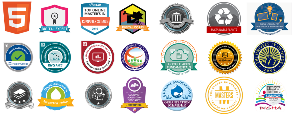 Digital Badges Examples