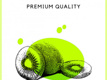 Kiwi Fruit Flyer